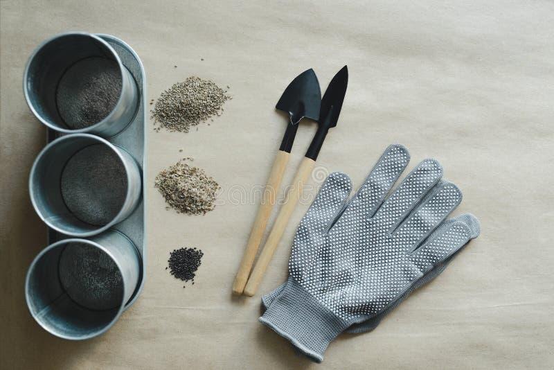 Den tomma metallkrukan som arbeta i trädgården hjälpmedel, handskar och, kärnar ur högar royaltyfria foton