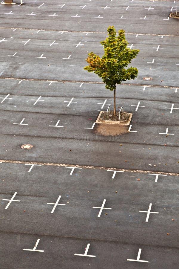 Den tomma parkeringshuset med markeringen ställer in i yttersidan arkivfoton