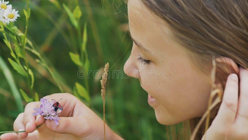 Den tonårs- flickan beundrar en mal på en blomma varm dagsommar arkivfoton