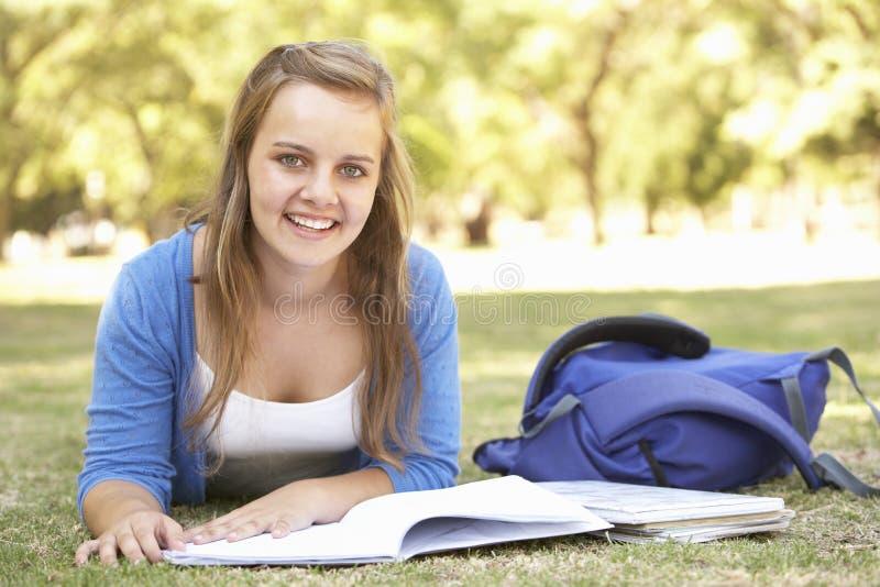 Den tonårs- flickan som in studerar, parkerar arkivfoto