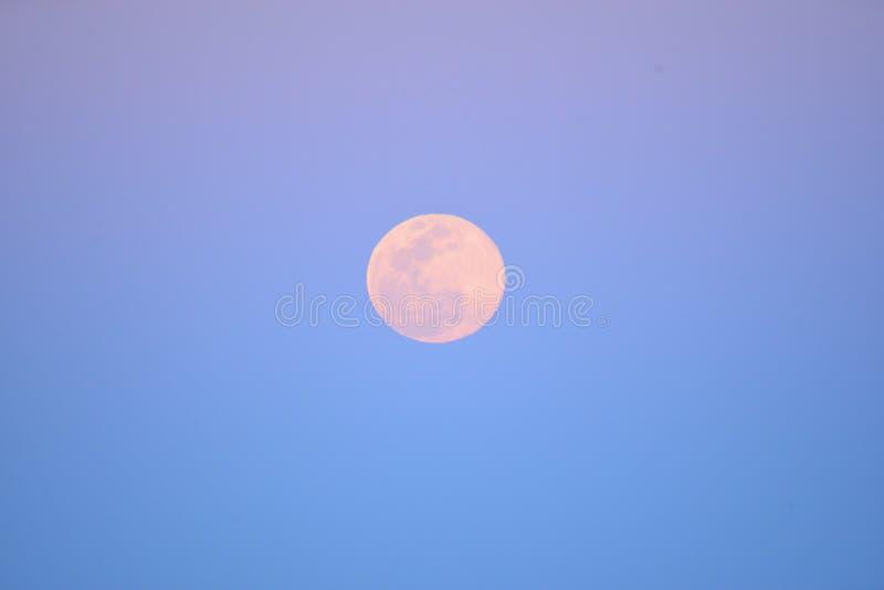 Den toppna månen stiger i en pastellfärgad rosa färg över den Amelia Island stranden arkivbild