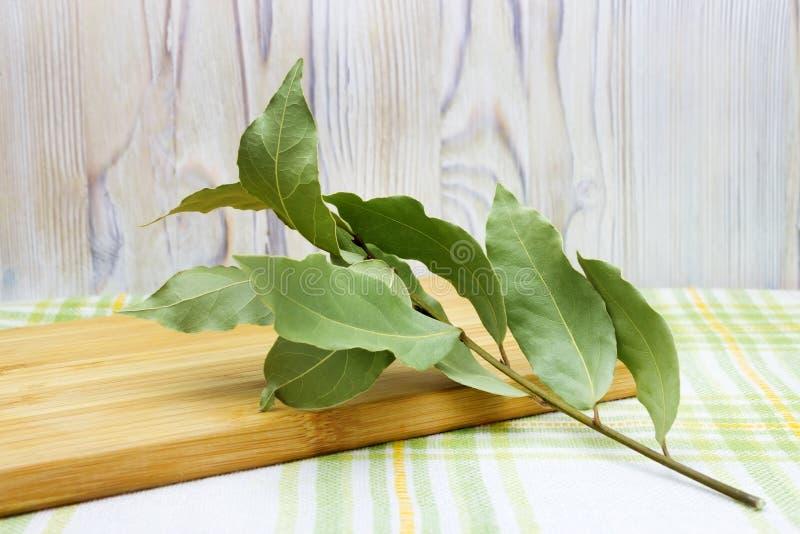 Den torkade aromatiska lagerbladen fattar på trätabellen Foto av lagerfjärdskörden för ecomatlagningaffär Antioxidantkökörter royaltyfri foto
