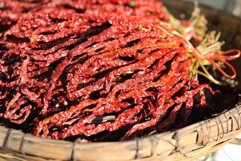 den torkade chilin pepprar red royaltyfri fotografi