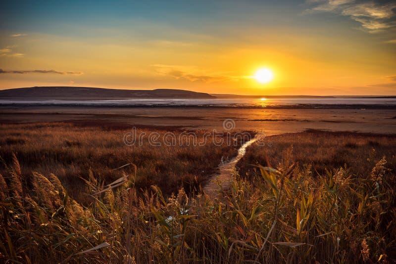 Den torkade salta sjön arkivfoton