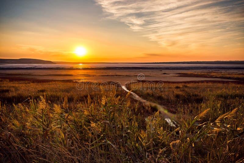 Den torkade salta sjön royaltyfri fotografi