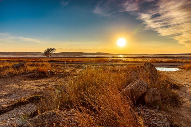 Den torkade salta sjön royaltyfria foton