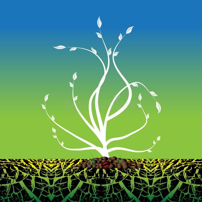 den torra växande växten smutsar royaltyfri illustrationer