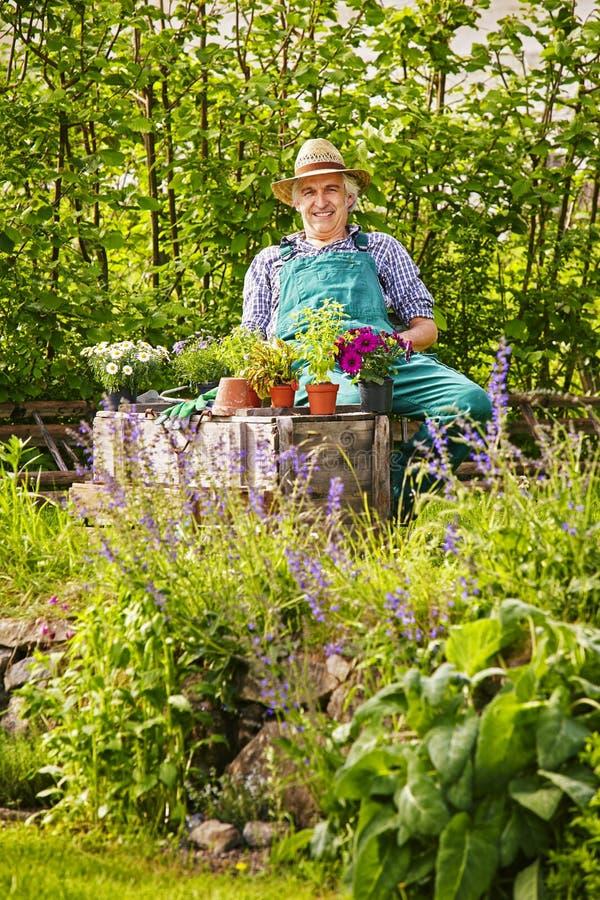 Den trädgårds- trädgårdsmästaren planterar sammanträde för sugrörhatt arkivfoto