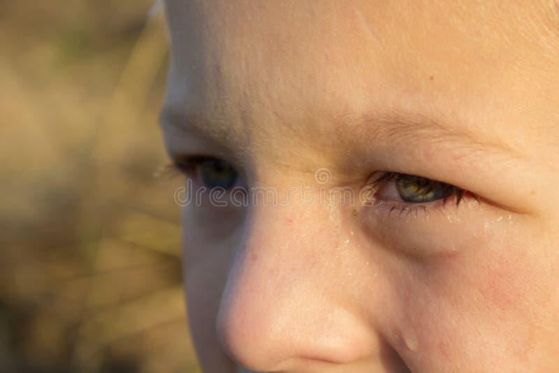 Den Tränen nah Augen stockbild