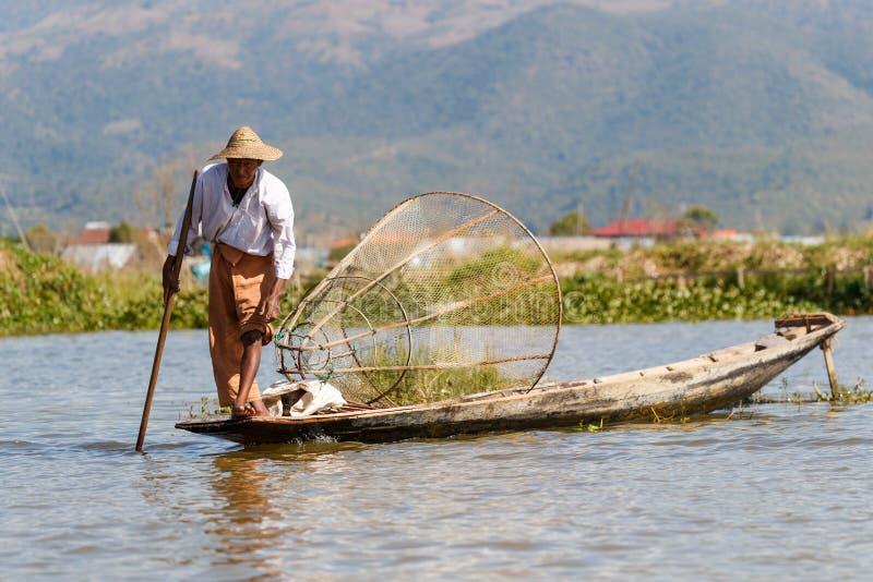 Den traditionella Burmese fiskaren på Inle sjön, Myanmar som var berömd för deras särskiljande, lade benen på ryggen ro stil royaltyfria bilder