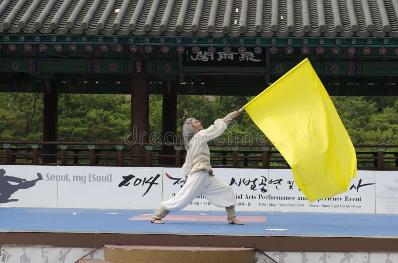 Den traditionella koreanska kampsportkapaciteten och erfarenhetshändelsen visar arkivbilder