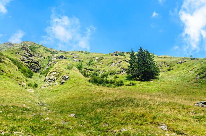 Den Transfagarasan v?gen i Fagaras berg, Carpathians med gr?nt gr?s och vaggar, n?r en h?jdpunkt i molnen fotografering för bildbyråer