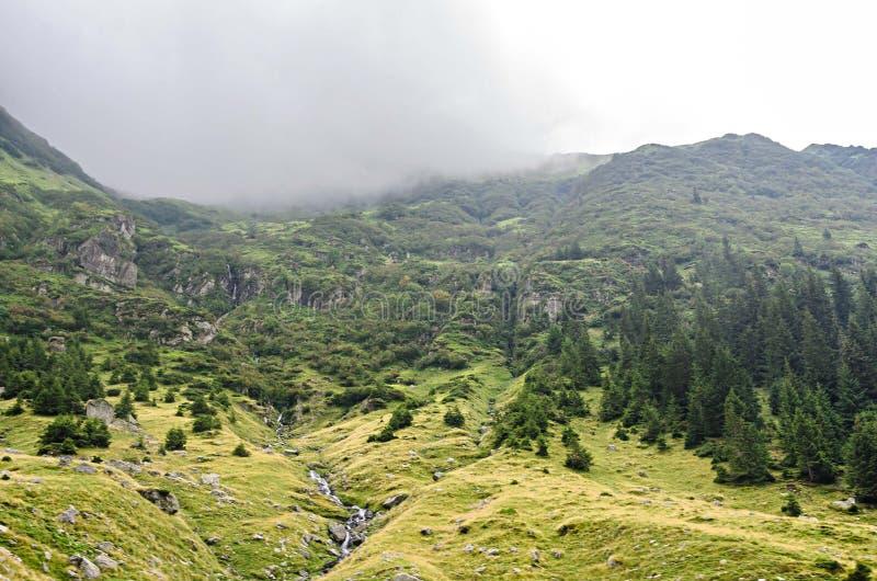 Den Transfagarasan v?gen i Fagaras berg, Carpathians med gr?nt gr?s och vaggar, n?r en h?jdpunkt i molnen royaltyfri foto