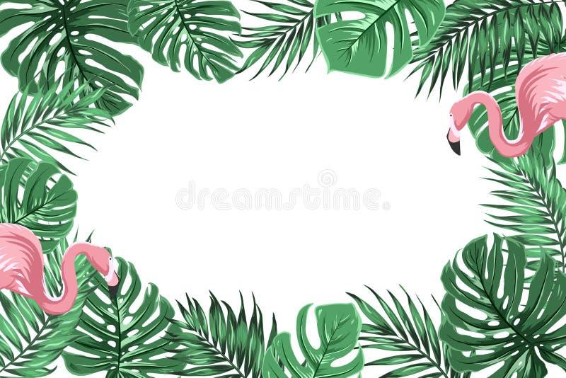 Den tropiska gränsramen med djungeln lämnar flamingo royaltyfri illustrationer