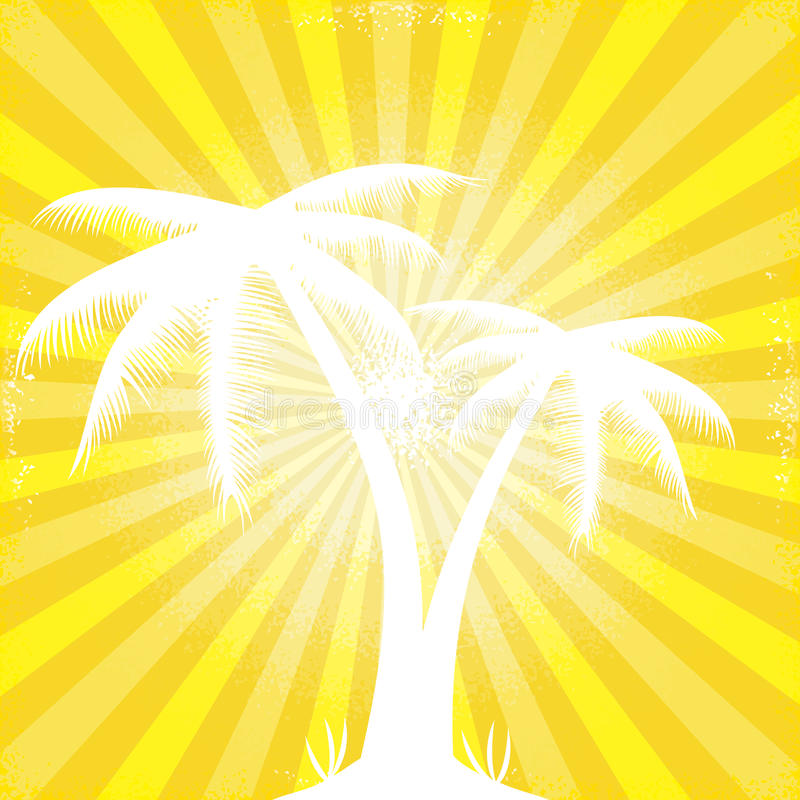 Den tropiska orange soliga strålen strålar silhouetted trees.