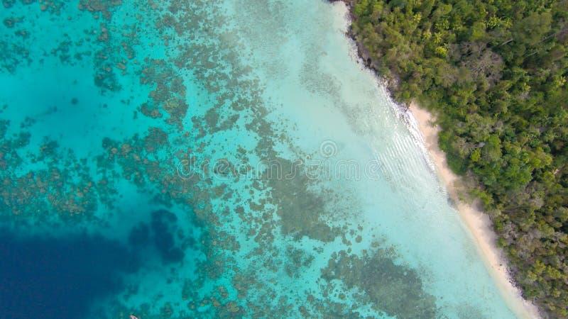 Den tropiska stranden med havet och gömma i handflatan taget från surret Seychellerna berömd hajstrand - flygbild arkivfoton