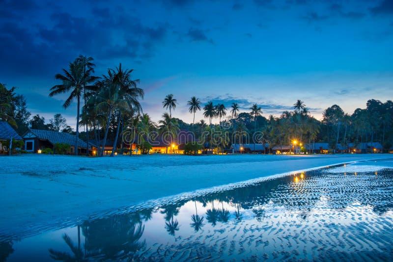 Den tropiska stranden med palmträd och semesterorten tänder på natten arkivfoto