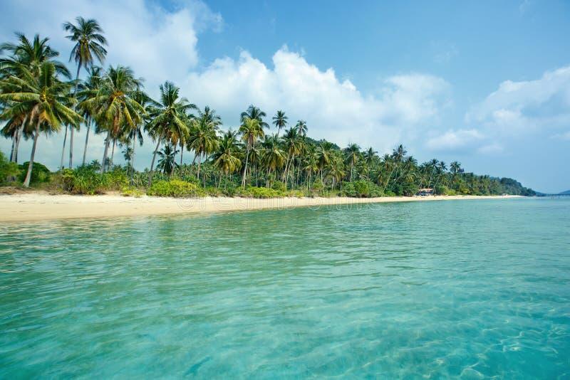 Den tropiska stranden och kokosnöten gömma i handflatan i Koh Samui, Thailand royaltyfri bild