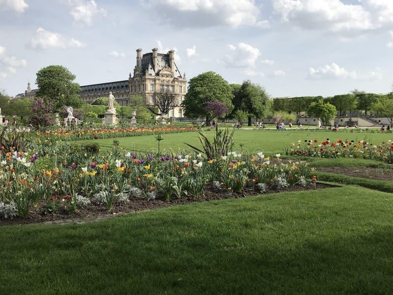 Den Tuileries trädgården i mitten av Paris med Musée du Louvre på bakgrunden royaltyfri fotografi