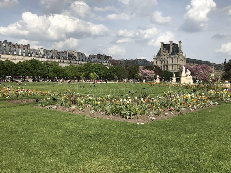 Den Tuileries trädgården i mitten av Paris med Musée du Louvre på bakgrunden royaltyfria bilder