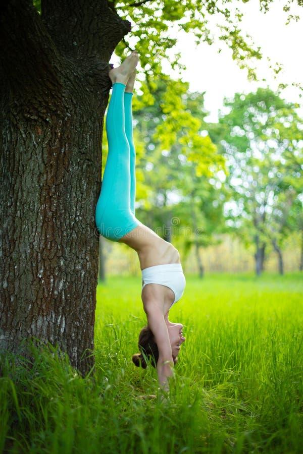 Den tunna brunettflickan spelar sportar och utför härligt, och sofistikerad yoga poserar i en sommar parkerar Grön frodig skog på royaltyfria foton
