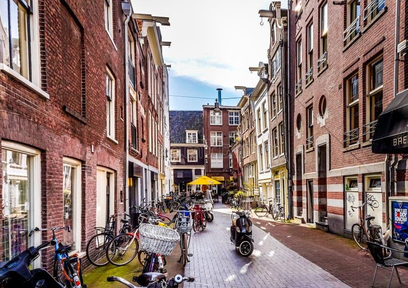 Den typiska gränden fodrade med cyklar längs de historiska husen i det gamla centret av Amsterdam royaltyfri fotografi