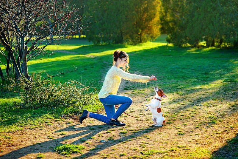 Den unga attraktiva brunettkvinnan som spelar med hennes hund i gräsplan, parkerar på sommar, livsstilfolkbegrepp arkivbild