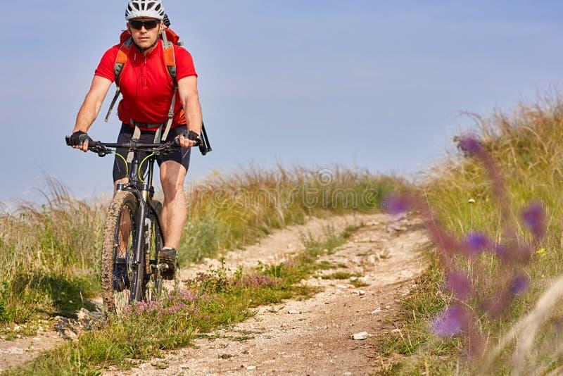 Den unga attraktiva cyklisten rider på vägen i fältet i sommarsäsong arkivfoton