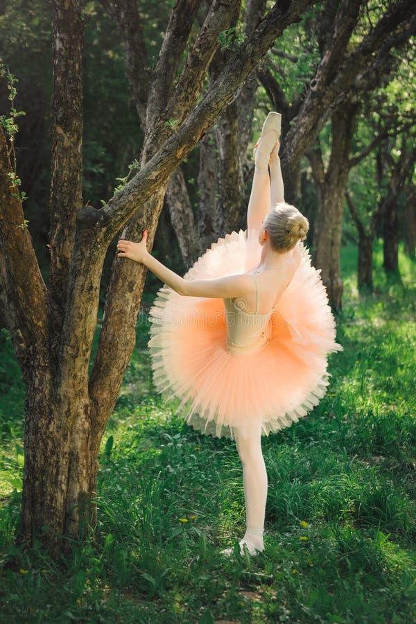 Den unga ballerina som sträcker och, övar för dans utomhus royaltyfri fotografi