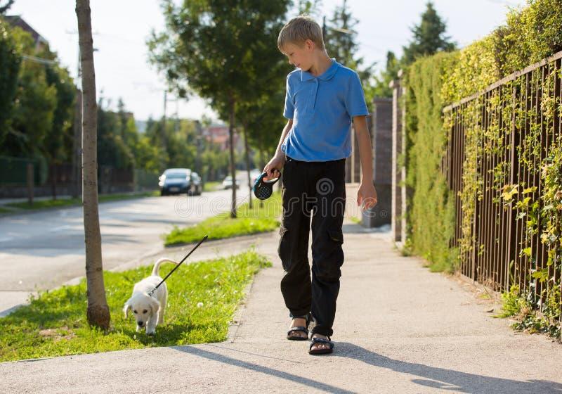 Den unga blonda pojken promenerar gatan på sommartid, med en mycket ung golden retrievervalphund arkivbilder