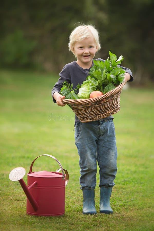 Den unga blonda trädgårdsmästaren visar proudly av hans skörd arkivbild