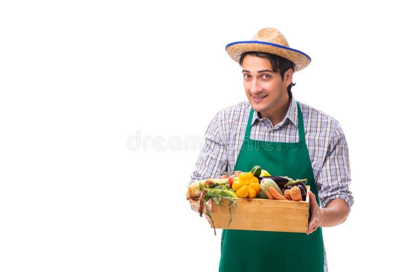 Den unga bonden med ny jordbruksprodukter som isoleras p? vit bakgrund royaltyfria foton