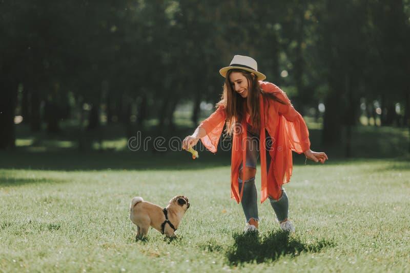 Den unga damen är roligt spela med hennes husdjur arkivfoton