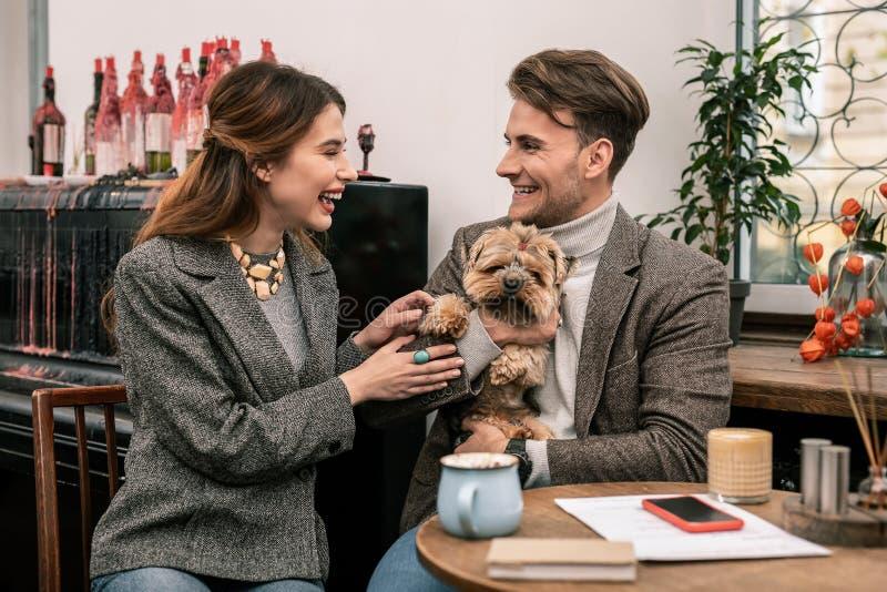Den unga familjen skojar om deras hund arkivfoton
