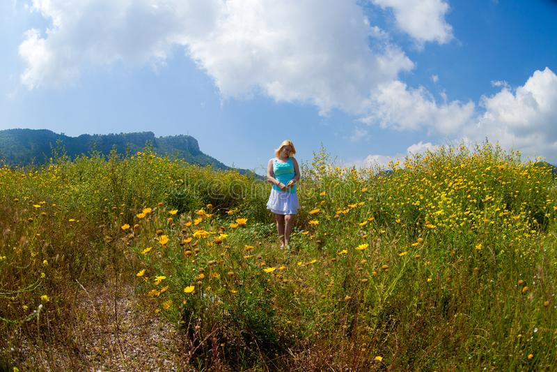 Den unga härliga blonda flickan i ett kamomillfält står posera med en blomma i hennes händer fotografering för bildbyråer