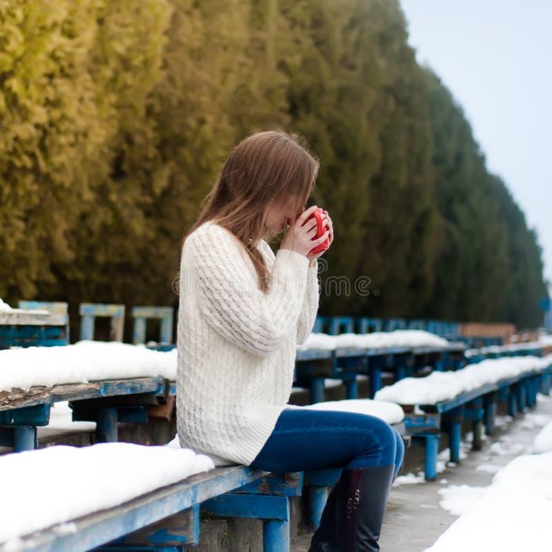 Den unga härliga flickan som dricker te i en kall vinter, parkerar royaltyfri fotografi