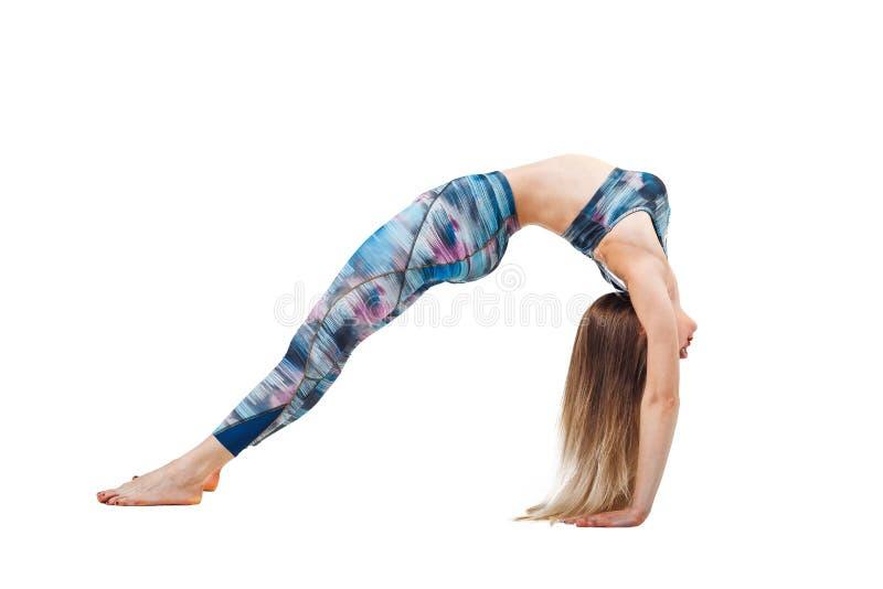 Den unga härliga kvinnan i färg-blått bästa praktiserande yoga som sträcker i den Urdhva Dhanurasana övningen, bron poserar och a arkivfoton