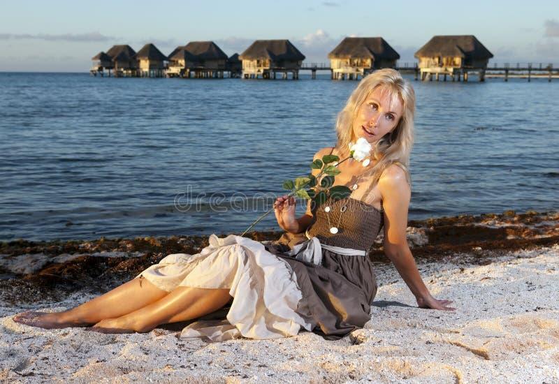 Den unga härliga kvinnan med en ros sitter på sand på havskanten royaltyfria bilder