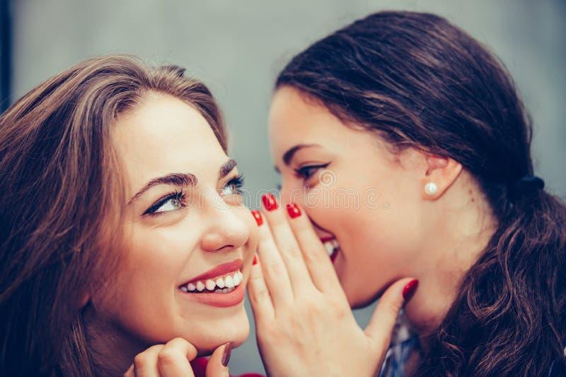 Den unga härliga kvinnan som viskar något till hennes vänner, gå i ax i ett kafé royaltyfria bilder