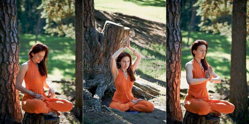 Den unga härliga rödhåriga flickan gör yoga parkerar in på gräsplan tillbaka collage royaltyfri bild
