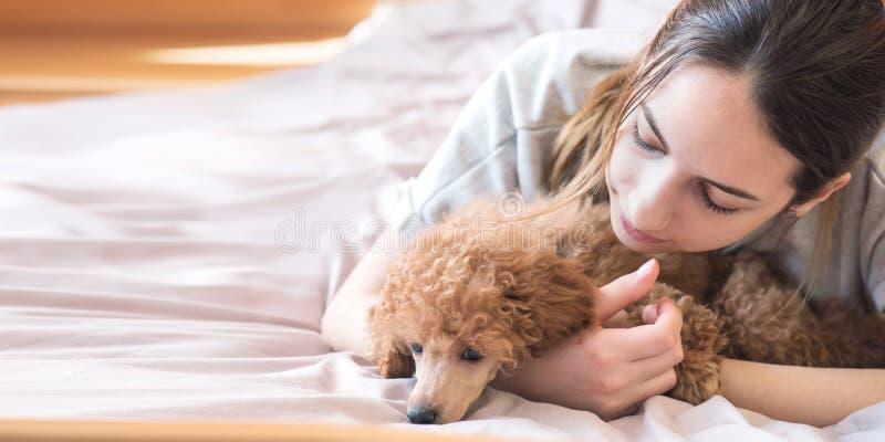 Den unga kvinnan är ligga och sova med pudelhunden i säng royaltyfria foton