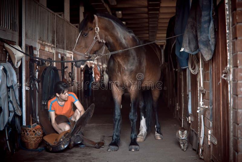 Den unga kvinnan förbereder sadeln royaltyfri foto