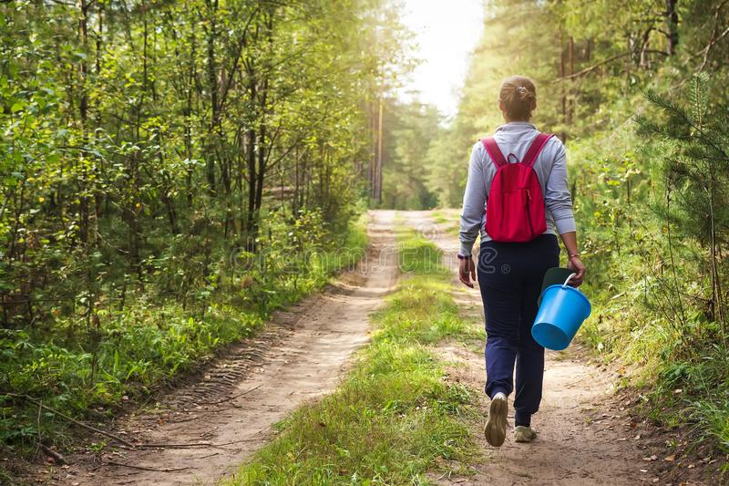 Den unga kvinnan promenerar skogvägen med korgen i hennes hand Flickan i skog går till mot efterkrav champinjoner och bär fotografering för bildbyråer