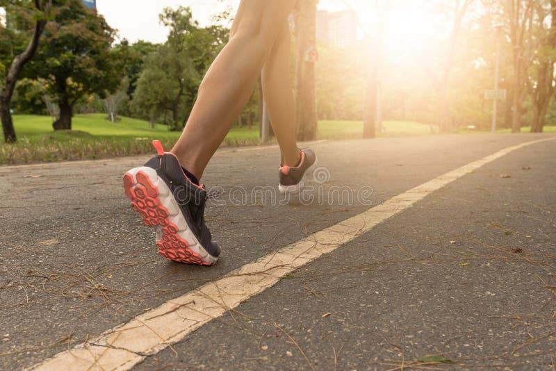 Den unga kvinnan som joggar i, parkerar i morgonen under varm sunlig arkivfoton