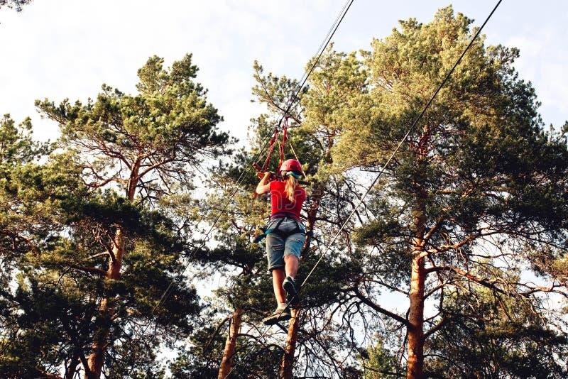 Den unga kvinnan som klättrar träd i hög tråd, parkerar med säkerhetsutrustning royaltyfri bild