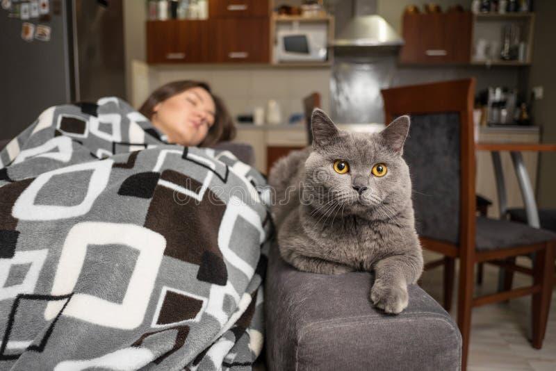 Den unga kvinnan som sover med hennes katt, katt v?ntar, n?r flickavaken upp, katten skulle sitta n?ra att sova flickan arkivbilder