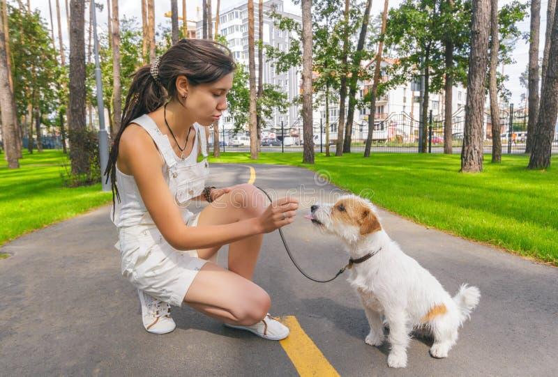 Den unga kvinnan som utbildar hennes hund i en sommar, parkerar royaltyfri bild