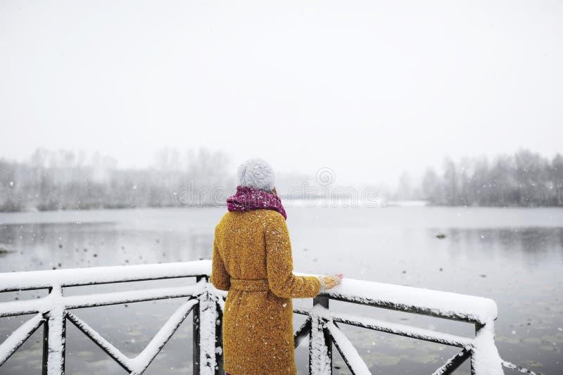 Den unga kvinnan står nära en djupfryst sjö arkivfoton