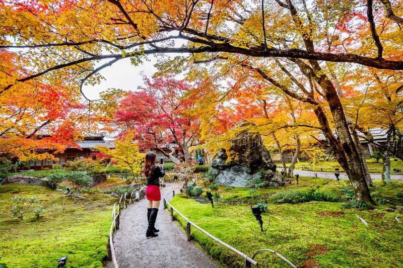 Den unga kvinnan tar ett foto i höst parkerar Färgrika sidor i höst, Kyoto i Japan arkivfoton