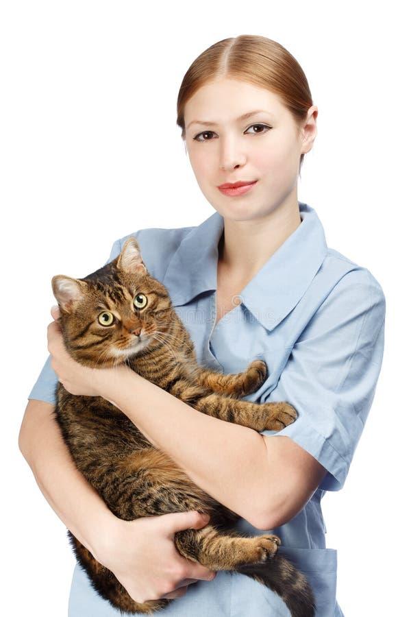 Den unga le veterinär- kvinnan som kramar vuxna människan, skrämde strimmig kattkatten royaltyfri bild